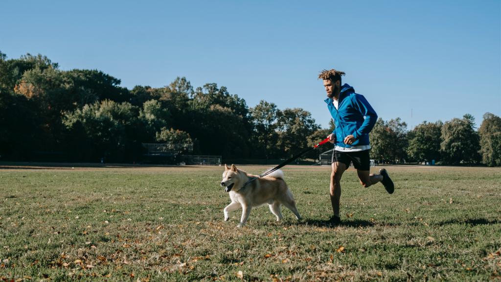 Veja-algumas-maneiras-de-se-exercitar-com-o-seu-cachorro-correr