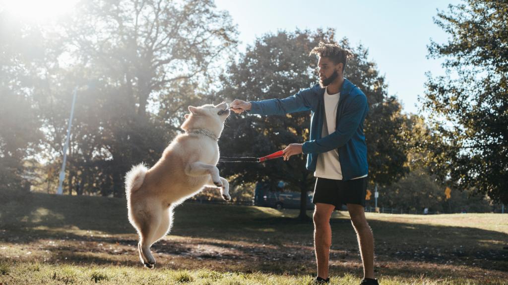 Veja-algumas-maneiras-de-se-exercitar-com-o-seu-cachorro-pular-corda